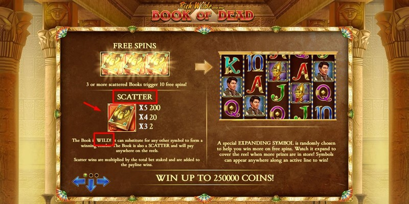 Book of Dead slot wilds and scatter